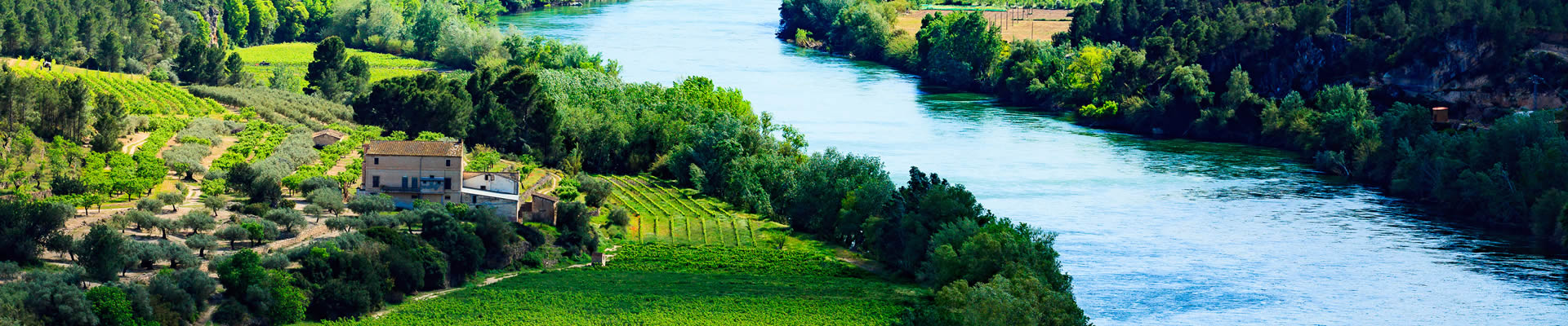 Spainish vineyards nestling a river